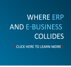 Where ERP and E-Business collides